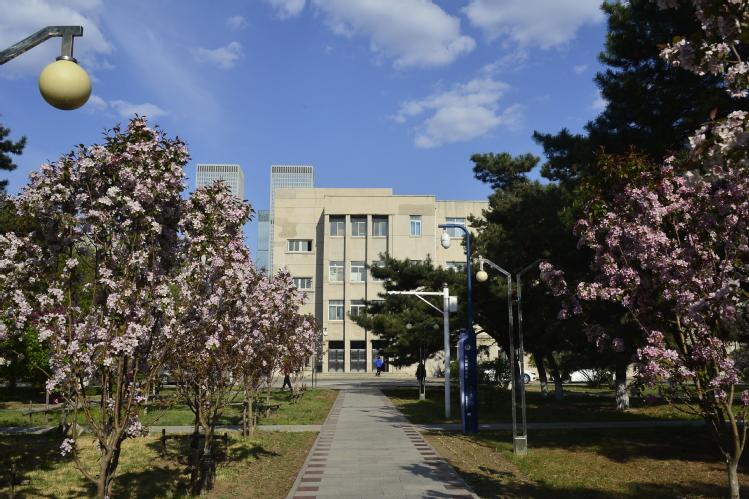 东北大学5.jpg
