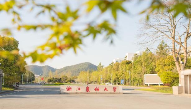 浙江农林大学航空/机修专业2020年招生简章